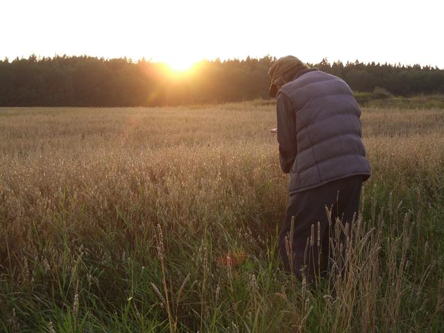 Frilansjournalist Anna Hultberg foto lantbrukare